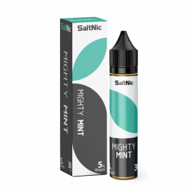 MIGHTY MINT - VGOD SALTNIC - 30ML